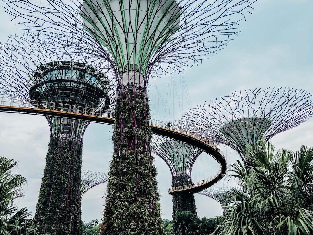 Supertree Grove Singapur Stahlbäume